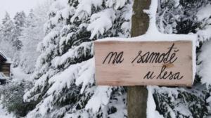 Na samotě u lesa v zimě